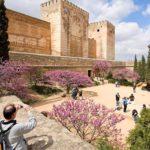 Visitas guiadas en Granada para grupos privados
